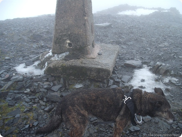 driech top of skiddaw