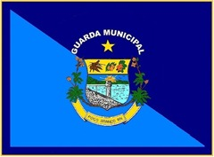 BANDEIRA GUARDA MUNICIPALIII