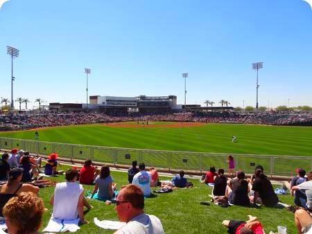 20-field
