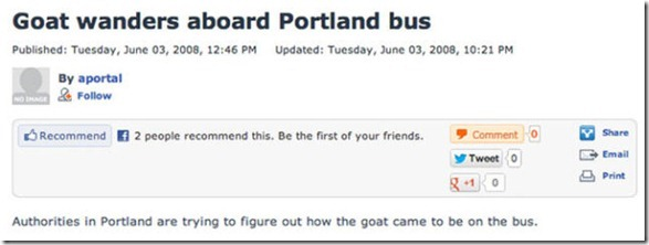meanwhile-portland-wtf-10