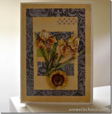 Yellow and Gray Irises