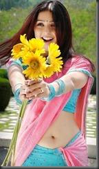 bhumika-new sill-in saree