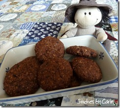 Chocolate and oakmeal cookies