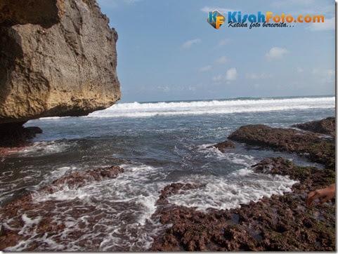 karang pantai watu kodok_07