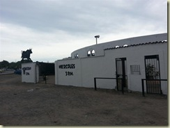 20121231_Bullfighting ring 2 (Small)