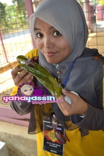 Batik313_DSC_2965cherating