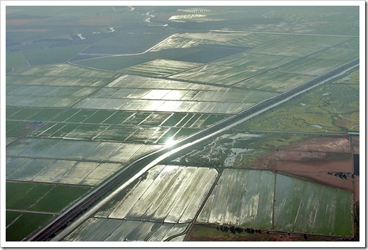 110627_flying_ricefields1