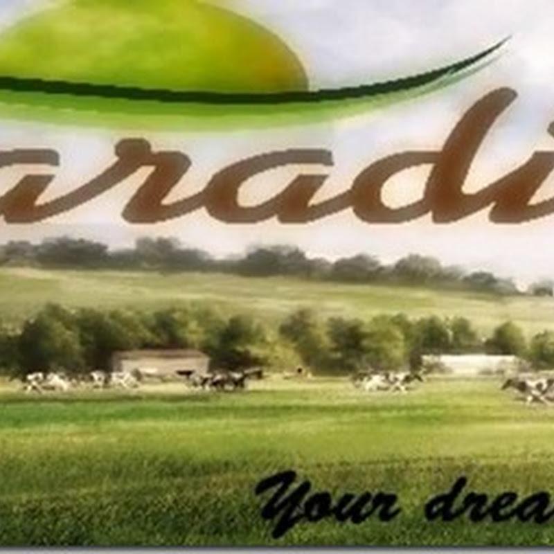 Farming simulator 2013 - Paradise V 0.91 Beta (Big Map)