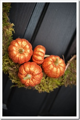 pumpkinwreath3
