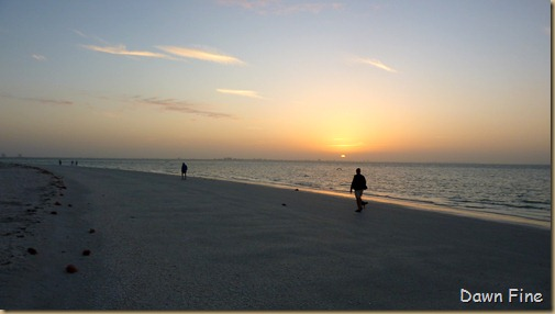 morning sanibel_008