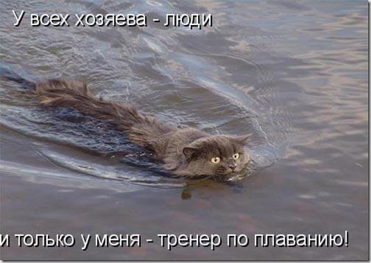 1246349723_jivotnie_8