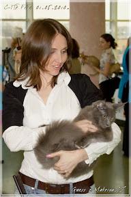 Международная выставка кошек WACC FIFe WCF 1-3 мая 2010г. С-Петербург
