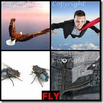 FLY- 4 Pics 1 Word Answers 3 Letters