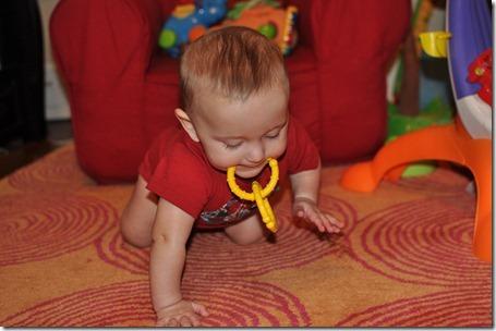 crawling boy 020613 005