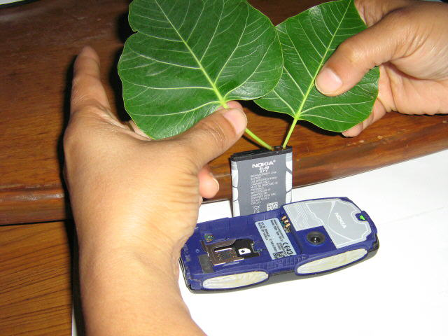 Innovation: Charge mobile with peepal leaves