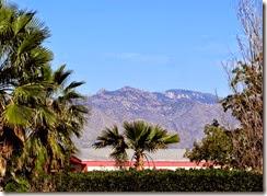 Casa Grande, Tucson 009