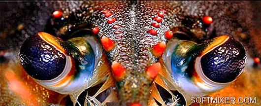 teknoloji_clip_image015