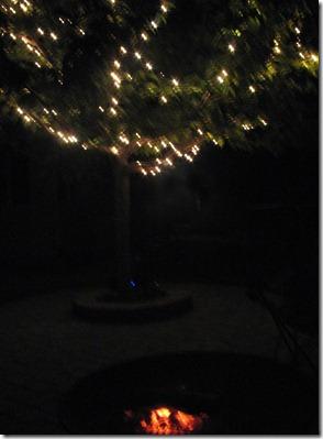 2012 10 20_0829 Campfire