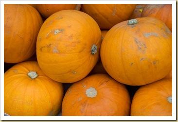 pumpkin-1995_640
