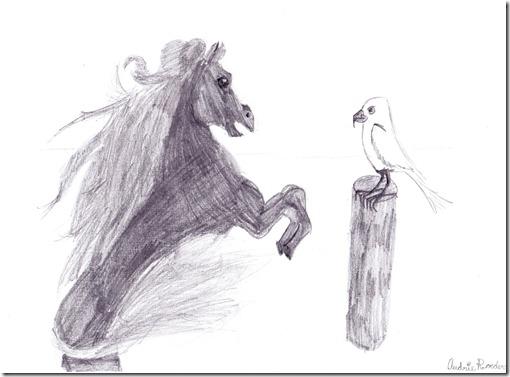 horse-gull