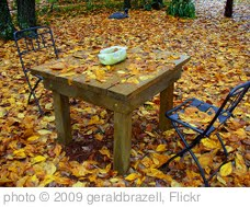 'Autumn Leaves' photo (c) 2009, geraldbrazell - license: http://creativecommons.org/licenses/by-nd/2.0/
