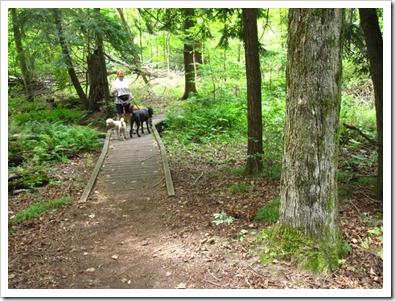 20120808_jobes-woods_002