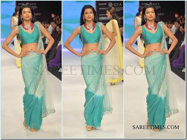 Jashn_IIJW_Saree (7)