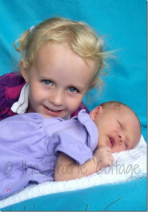 Skyleigh & Liberty watermark