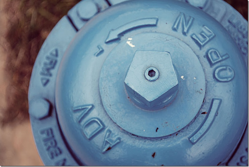 fire-hydrant-blue-cover