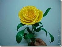 rosa amarilla (2)