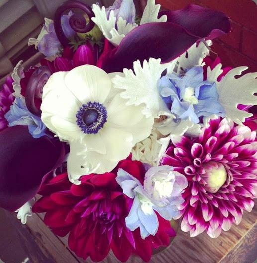 1174762_10151586377886123_856699836_n plum sage flowers