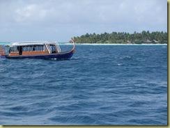 Dhoni at Sea