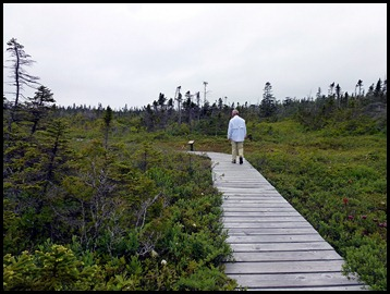 04w5 -  Hike - The Bog Boardwalk