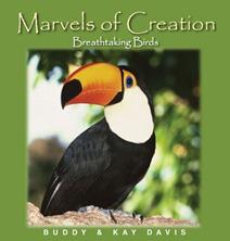 marvels-birds