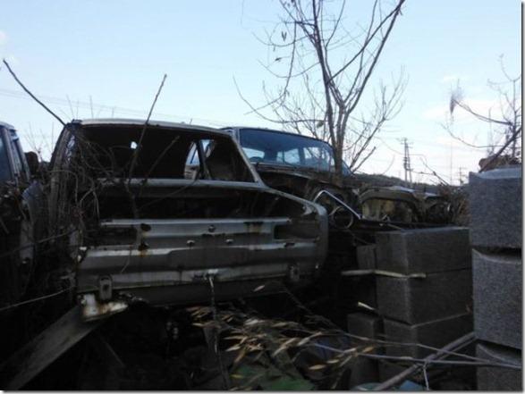 japan-graveyard-old-cars-25