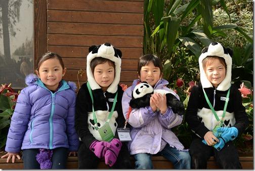 DSC_7239LR_Pandas