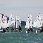 IMG_1830_R11 start.JPG