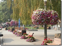 Flowers everywhere in Leavenworth