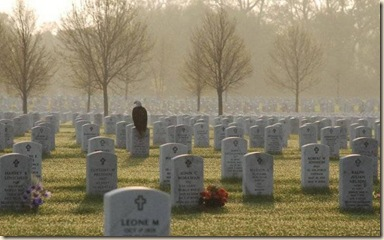 Eagle in cemetery