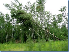 2658 Minnesota Hwy 2 East - storm damage