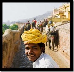 Subhro cornaca - El viaje del elefante