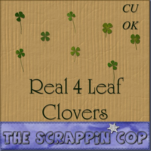 SC_4LeafCloverPreview