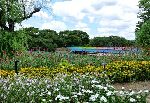 2h- Glória Ishizaka - Jardim Botânico Nagai - Osaka