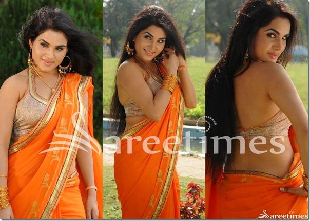 Kavya_Singh_Backless_Saree_Blouse