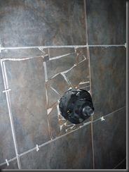 showerproject5