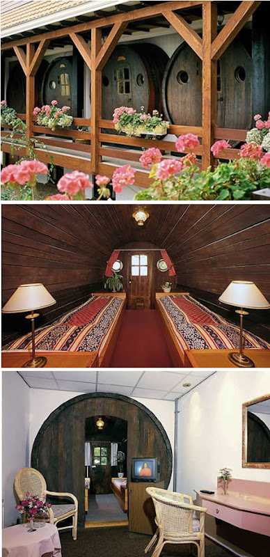 The Most Bizarre Hotels Around the World: Capsule Hotel (Netherlands), Everland( Paris), Hôtel de Glace(Canada), Waterworld Hotel(China),Sala Silvergruva(Sweden),Das Park Hotel(Austria), The De Vrouwe van Stavoren Hotel(Netherlands)