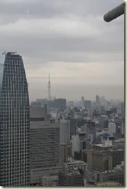 Tokyo 2013 006