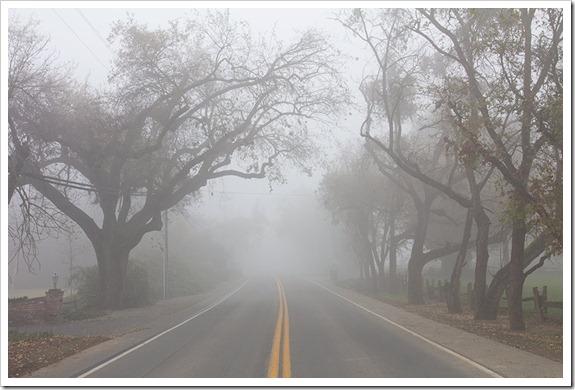 111220_fog_road