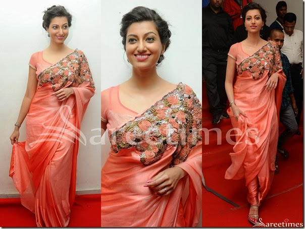 Hamsa_Nandini_PEach_Embellished_Saree