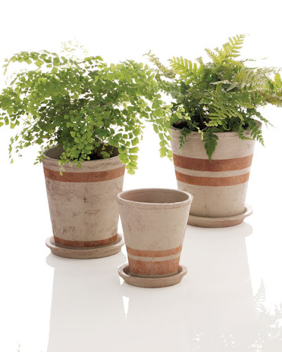 Add a striped touch to your outdoor space with these customized planters.  (marthastewart.com/273367/pots-of-all-stripes)